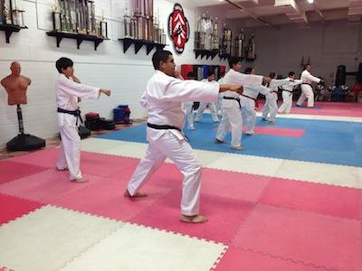 KoSho Karate Juniors Adults Form